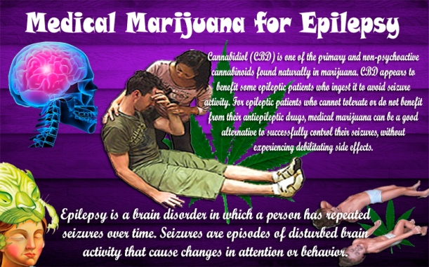 If this plant can treat epilepsy as effectively as it does...why are we keeping it from so many Americans?