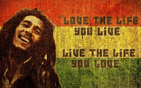 Bob Marley was a peaceful activist. He was love, peace and beauty...a genius emotionally... Happy Birthday Bob Marley!