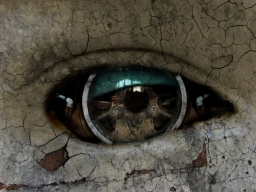 Crack in the Eye courtesy of Google Images