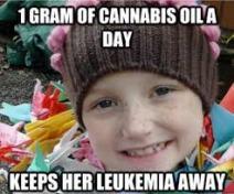 One Gram of Cannabis a Day Keeps Her Leukemia Away.