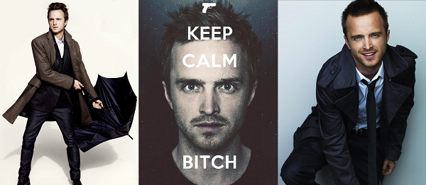 fangirls-guide-to-aaron-paul-2