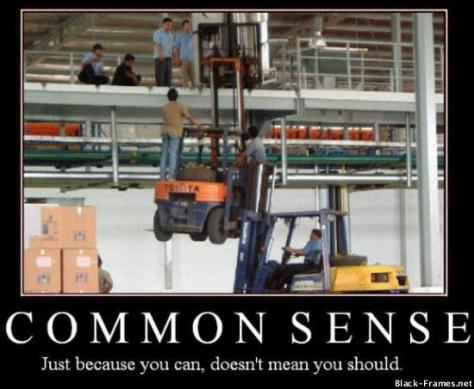 common sense just because you can courtesy of wwwdotsodaheaddotcom