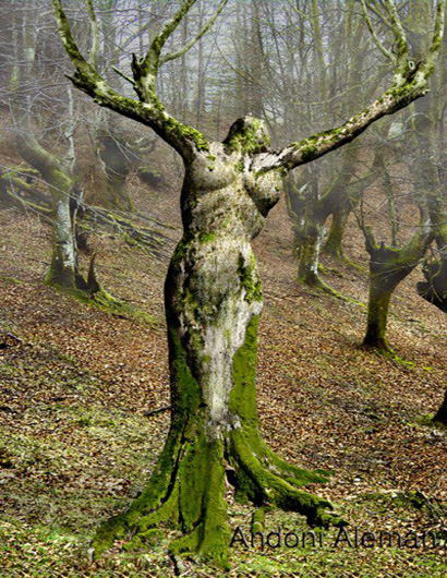 Bizarre Tree Art. Image courtesy of www.crispyclicks.com via Google Images.