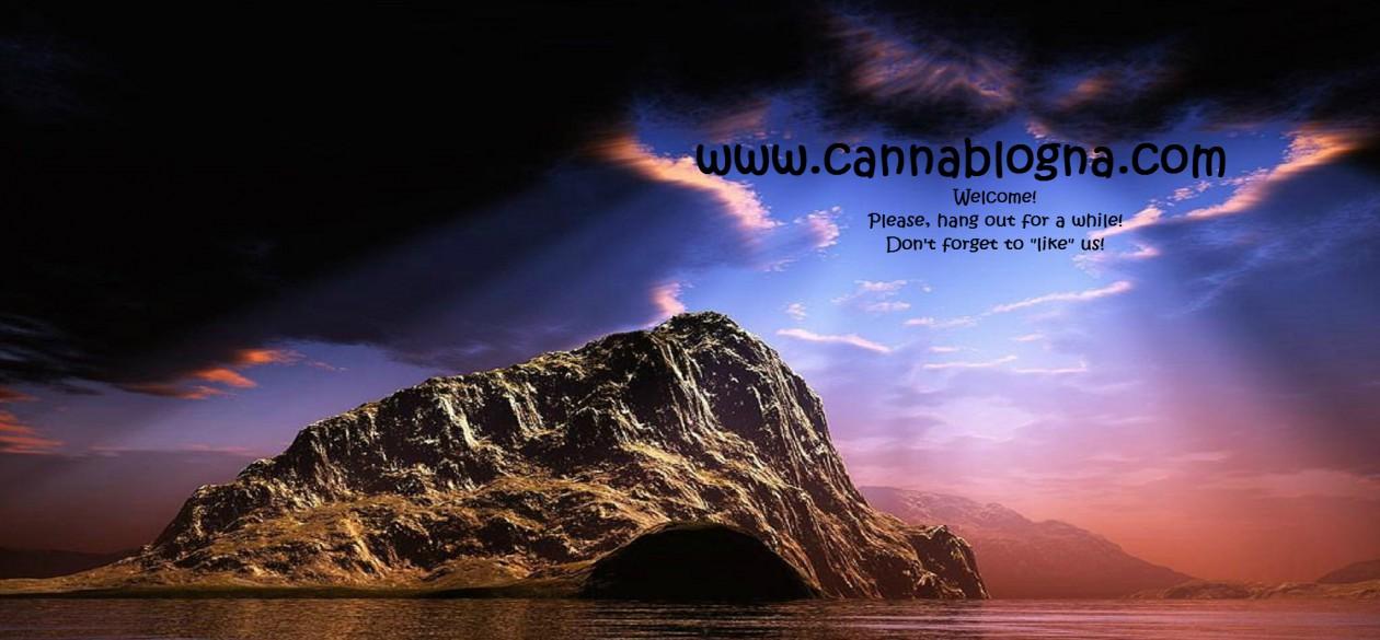 www.CannaBlogna.com: We enjoy your company…Keep coming back!